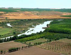 ancient-mesopotamia-tigris-river