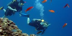 Scuba Diving in Rhodes