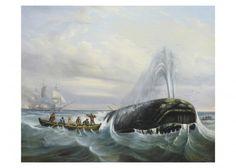 19e siècle -       Alex TARDYF