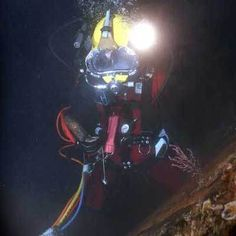 How to Become a Professional Diver - cDiver