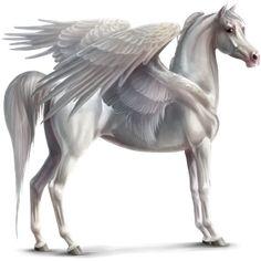 Brave Delight, Pegasus Thoroughbred Chestnut #44362968 - Howrse