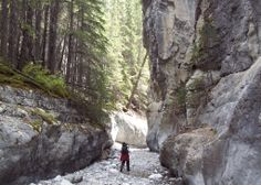 Grotto Canyon Trail, Canmore, Alberta