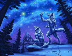 We humans have always been looking to the stars; be it for guidance, for relaxation, or out of curiosity, we always gaze with a sense of wonder. I like to think that werewolves might have the...