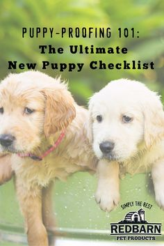 Whether you're a new puppy parent for the first time or the fiftieth, the first days are always hectic. Use our new puppy checklist to reduce your stress!