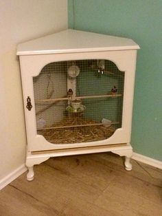 Turn a side table into an aviary Bird Cage Design, Diy Bird Cage, Small Bird Cage, Bird Cages, Small Birds, Pet Birds, Diy Parakeet Cage, Finch Cage, Diy Bird Toys