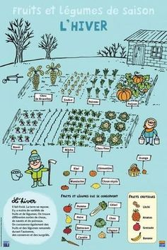 Fruits et légumes - Hiver Potager Bio, Potager Garden, Winter Fruits And Vegetables, Teaching French, Plantation, Learn French, French Language, Garden Planning, Vegetable Garden