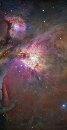 Mischt ein Schwarzes Loch den Orionnebel auf? Das Zentrum von M42 mit dem Sternhaufen – das mutmaßliche Schwarze Loch wäre genau zwischen den vier hellen Sternen, die die Mitte des Sternhaufens markieren, die Trapezsterne. (Bild: NASA / ESA; HST) http://www.pro-physik.de/details/news/2566481/Mischt_ein_Schwarzes_Loch_den_Orionnebel_auf.html
