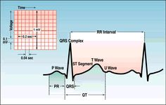 ECG Interpretation | MEDICAL PPT|Collection of Free Online Medical Powerpoint Presentations