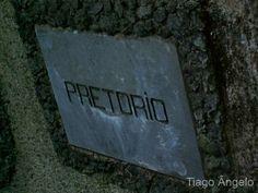 http://bussaco.com.sapo.pt/galerias/galeria_I/fotosI/V_Pilatos_36.jpg