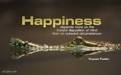 """Happiness depends more on the inward disposition of mind than on outward circumstances."" Get this Benjamin Franklin quote as desktop wallpaper here! Inspirational Wallpapers, Inspirational Quotes, Motivational Thoughts, Crocodile, Happy Quotes, Life Quotes, Happiness Quotes, Positive Quotes, Happy Sayings"