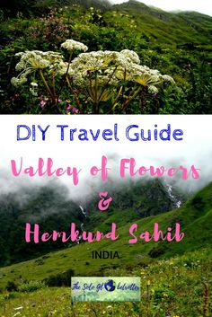 How to do Valley of Flowers on your own on a budget? Here is a DIY travel guide to the valley of flowers & Hemkund sahib, Uttarakhad, India