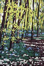 Woodland Gallery - Alexandra Buckle