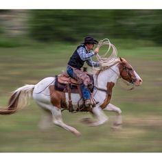 Thank you @natgeotravel for posting this amazing shot of Hunter and Chief today. We look forward to having you back at the CM this summer for more fantastic workshops. #cm_ranch1 #wyoming #wyomingtravel #Nationalgeographicexpeditions #horses #cowboys #dud