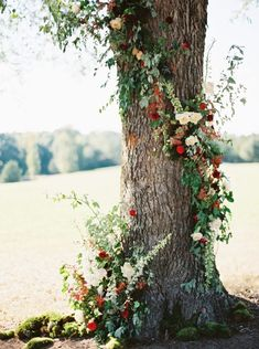 27 Romantic Wedding Tree Backdrops And Arches – Trend Decor for You! Red Wedding Flowers, Tree Wedding, Farm Wedding, Floral Wedding, Purple Wedding, Wedding Ceremony Ideas, Ceremony Backdrop, Wedding Venues, Floral Garland