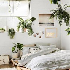 Nice bit of plant styling inspo from @lucygladewright #huntingforgeorge #plantstyling #palettebed #styling #inspiration #interiordesign #greenlife #plantlife #plantsforlife #theplantroom