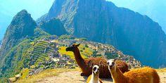 Machu Picchu, llamas, pisco, Lake Titicaca...and so much more! Come with us to Peru www.finisterra.ca