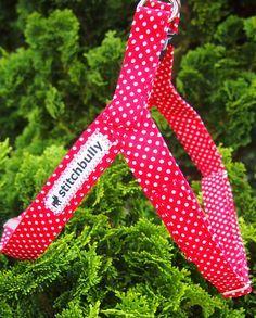 Hunde Step In Geschirr für kleine Fliegenpilzgassi von stitchbully.de für Hunde auf DaWanda.com