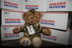 We are very excited to introduce our brand-new, made-especially-for-Operation Gratitude Battalion Buddies! We work with Family Readiness Officers and battalion leaders to send these cuddly bears in care packages to our youngest Warriors --   the children of deployed Military. Thank you to our wonderful vendor, Glory Be (http://www.glorybe.com/) for supplying us with these adorable stuffed toys!