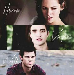 The human, the vampire, the wolf