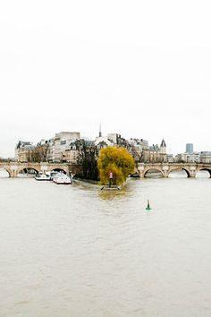 the seine / paris