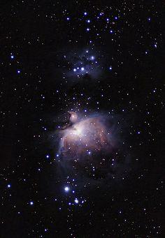 Messier 42   by Eduardo Mariño