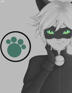 Chat noir smile