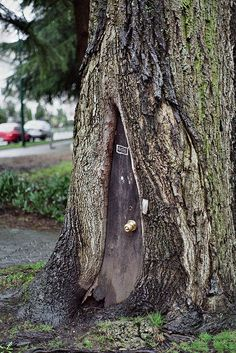 Find old bark. I love this idea for the start of my fairy garden. I will have to search the tree's in my yard for the best location. Fairy Tree Houses, Fairy Village, Fairy Garden Houses, Gnome Garden, Fairy Gardens, Garden Kids, Fairies Garden, Miniature Gardens, Garden Crafts