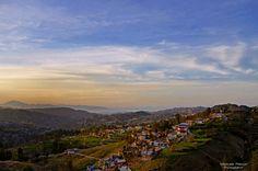 Shimla Hill, Abbottabad, Hazara Division-KPK, Pakistan.