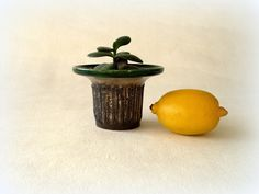 Strehla cactus planter/ votive, Fat Lava pottery, Mid Century Modern East Germany decorative stone textured  with green trim by Cherryforest on Etsy
