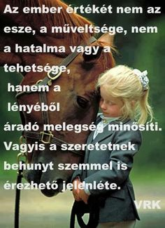 Kiállhatatlan vagyok? | Csendes Percek Istennel Equestrian Quotes, Funny Quotes, Life Quotes, Word 2, Horse Quotes, Positive Thoughts, Einstein, Life Is Good, Quotations