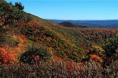 WV Scenic Highway In Fall - Uploaded by J. Waters on panoramio.com