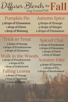 essential oil diffuser blends for Fall  #theresanoilforthat #essentialhealthwithKellisa