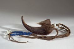 HAIR ORNAMENT, BEAR CLAW NORTH AMERICAN ETHNOGRAPHIC COLLECTION   Catalog No: 50.2/ 2906 Culture: CHEYENNE Country: USA Material: CLAW (BEAR), HIDE, FUR, BEADS, SHELL (COWRIE), PIGMENT Dimensions: L:24 W:4 H:2 (in CM) Acquisition Year: 1927 [GIFT] Donor: GRINNELL, GEORGE B., DR.