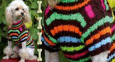 Un pull pour chien au tricot                                                                                                                                                      Plus
