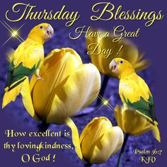 Thursday Blessings, Psalm 36:7- Have a great Day!