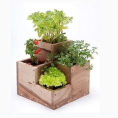 Huerta ideal para cultivo de 4 aromáticas. Diseños pensados para decorar. Plantar, Terrarium, Planter Pots, Baby Shower, Exterior, Home Decor, Vertical Vegetable Gardens, Wooden Crates, Handmade Home Decor