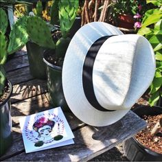 White Fedora Hat Fab white fedora hat featuring a black ribbon. Like new. Dorfman Pacific Company Accessories Hats