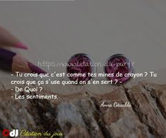 http://www.citation-du-jour.fr/citations-anna-gavalda-344.html