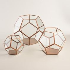 With panes of glass set against a metal frame, our faceted copper terrarium is an eye-catching display case or home for your terrarium plant. www.worldmarket.com #WorldMarket Plants and Gardening Tools