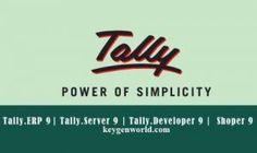 Tally ERP 9 Crack + Serial Number Full Version