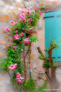 Colors of Provence, Gigonda