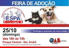 BONDE DA BARDOT: SP: Adoção de animais em Santo André neste domingo (25/10)