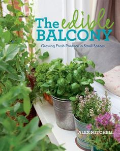 The Edible Balcony: Growing Fresh Produce in Small Spaces: Alex Mitchell: 9781609614102 Alex Mitchell, Small Space Gardening, Urban Gardening, Balcony Gardening, Gardening Books, Plant Supports, Herb Pots, In Season Produce, Plantar