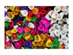 Flores de hoja de maíz ©Diana Archundia Aranda