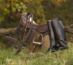 English Saddle and Boots Photo