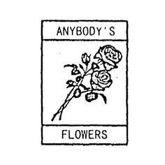 Anybody but you!