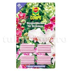 Compo fertilizer sticks for orchids 20 sticks - New Ideas Hanging Orchid, Diy Hanging, Phalaenopsis Orchid, Orchid Plants, Culture Indoor, Exotic Beauties, Orchid Care, Indoor Plants