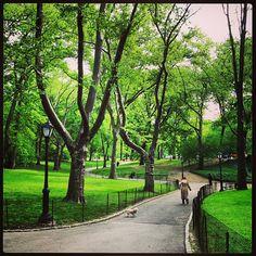 Central Park in the spring http://korenreyes.com