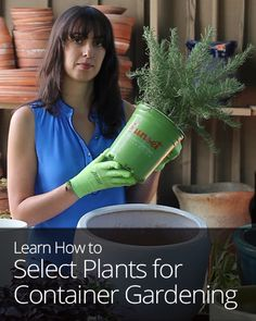 Time to design your container garden! Sunset Magazine shows you how to pick plants for your containers based on sunlight, water needs, and aesthetic principles.