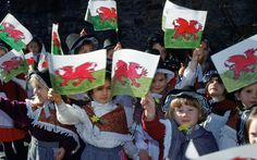 March 1 is St David's day. The celebration of the patron saint of Wales involves parades, school concerts and other public celebrations. It's traditional to wear one of the symbols of Wales – a leek or a daffodil – in your lapel. White Dragon, Red Dragon, Welsh National Anthem, Symbol Of Wales, Saint David's Day, National Symbols, Irish Sea, Dragon Pictures, Patron Saints